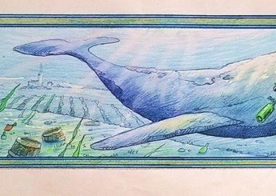 Baleine-ok